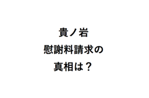 貴ノ岩慰謝料請求